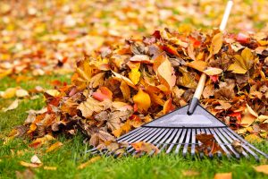 How to Maintain Your Fence This Fall